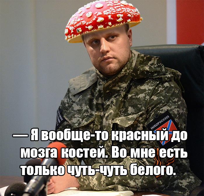 Красный Губарев