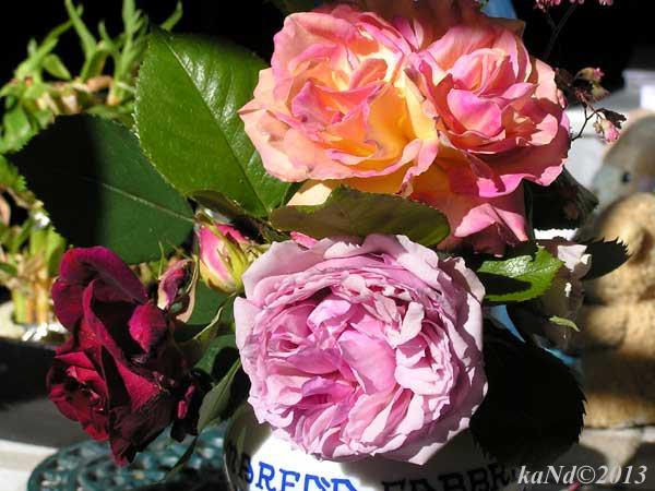 O130604009-roses-Elle,-Red-Parfum,-Wedgewood600