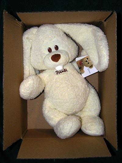 Box Bunny, Trudi