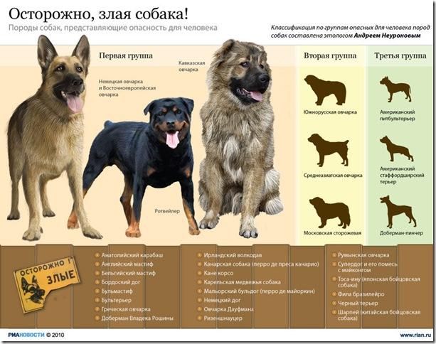 Рейтинз зсобных собак