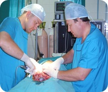 От эпидемии ВИЧ спасёт обрезание