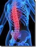 Стала мучить боль в спине? Виноват компьютер