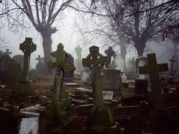 3641085-misty-graveyard
