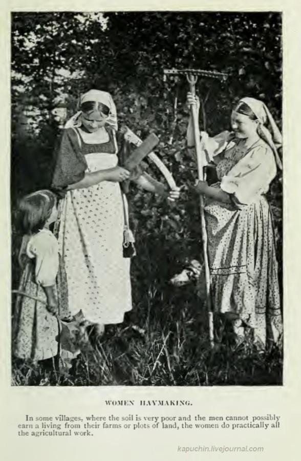 Женщины на сенокосе