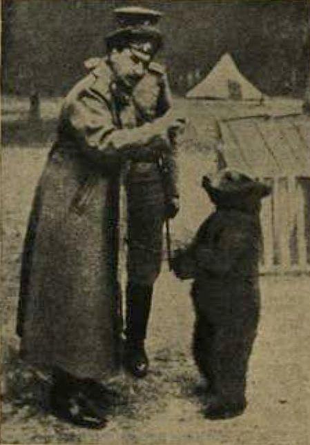 Медвежонок в русских окопах  Новое время 19 ноября 1916 года