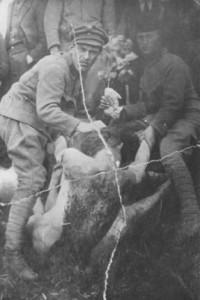 Крым 1921  чекисты перетаскивают женские трупы