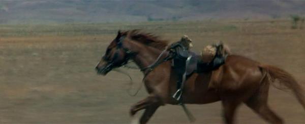 Лошадь без всадника