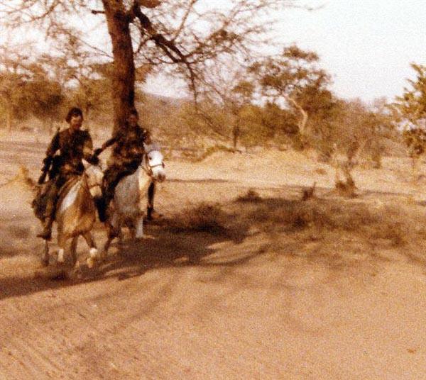 Родезия кавалерия в лесу