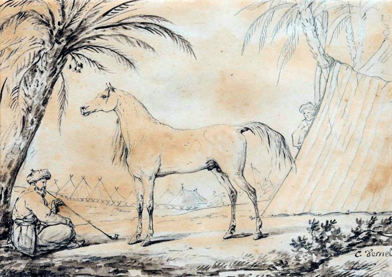 "Французский художник- баталист, рисовальщик, литограф, анималист, карикатурист Carle Vernet (1758-1836). ""Таурис, конь Наполеона"". Бумага, акварель, карандаш."