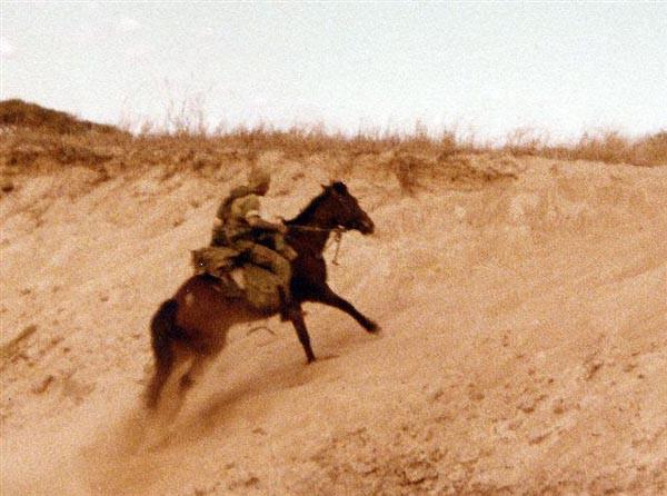 Родезия кавалерист в песках