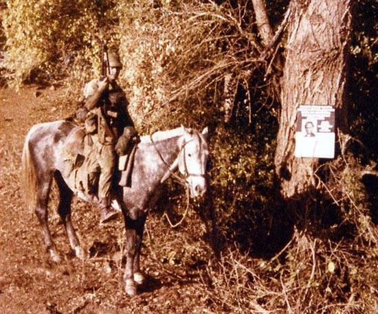 Родезия кавалерист у дерева с объявлением