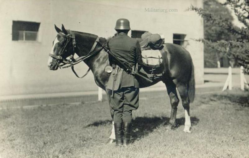 Аргентинский кавалерист. Обратите внимание на качество лошади оно великолепно.