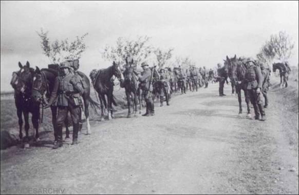 Предположительно, это 7-й пехотный полк вермахта 3-й пехотной дивизии