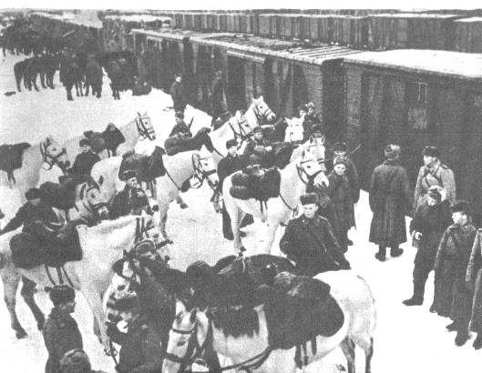 Кавалерия Сталинград 3