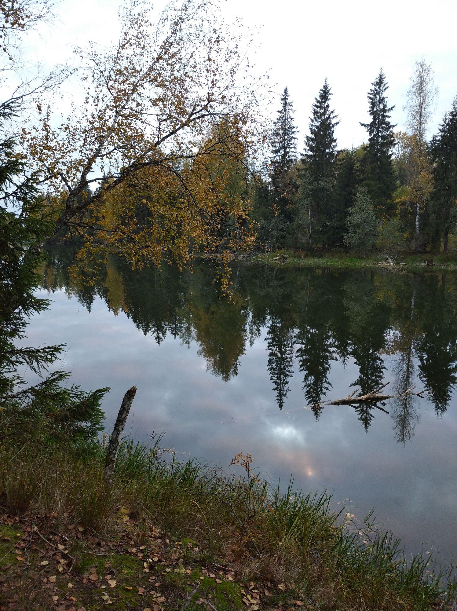Ближняя часть озера