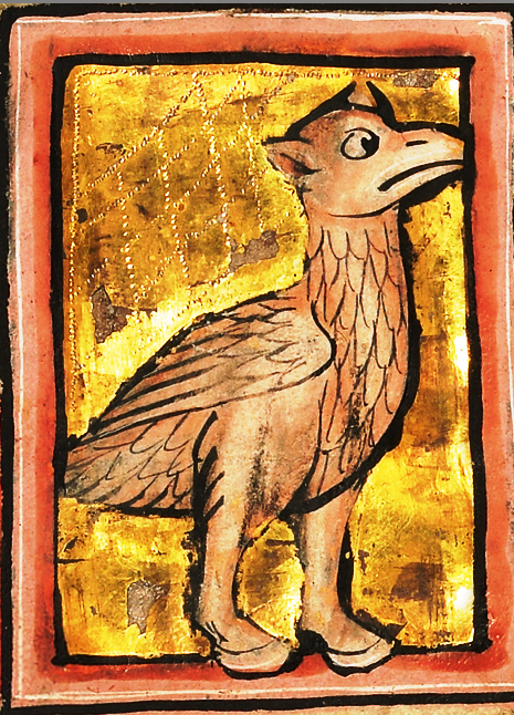 Страус 1277