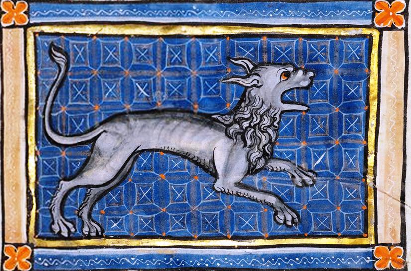 Гиена 1270