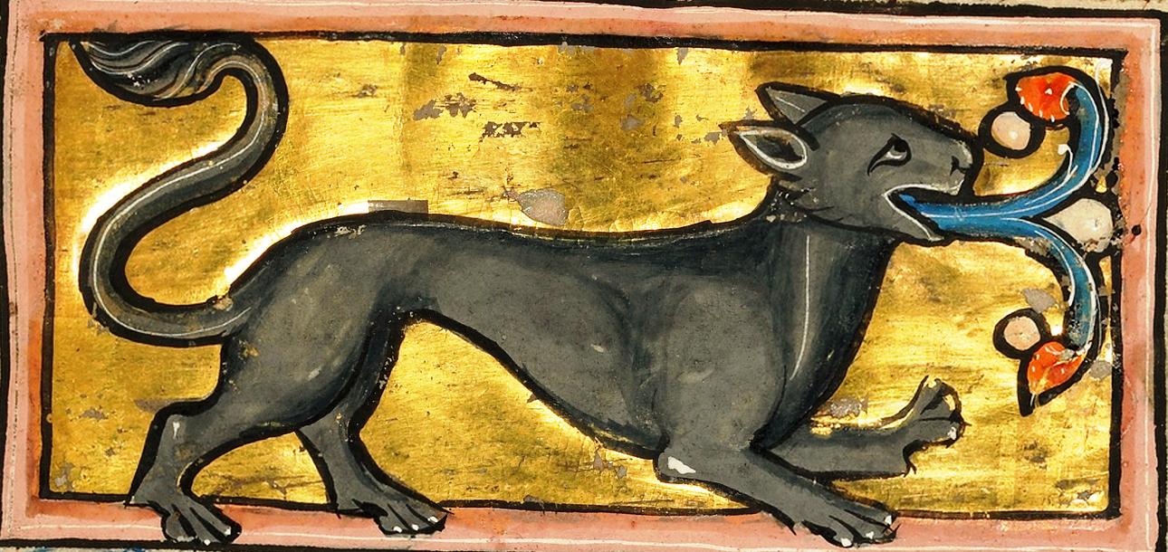 Гиена 1277
