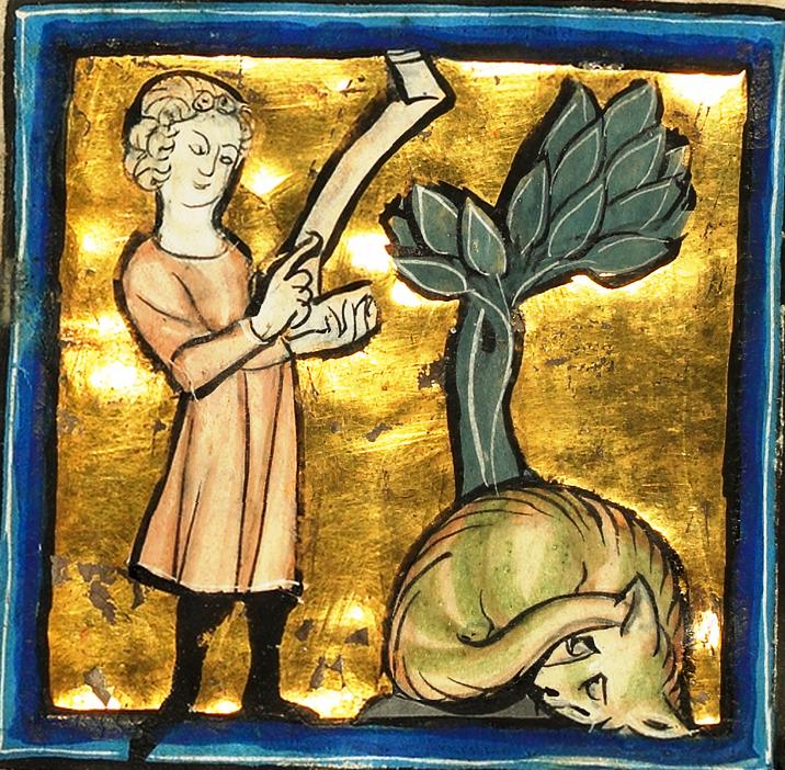 Человек и змея. 1277