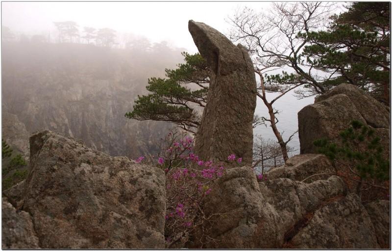 О. Пятин — Дракон в тумане