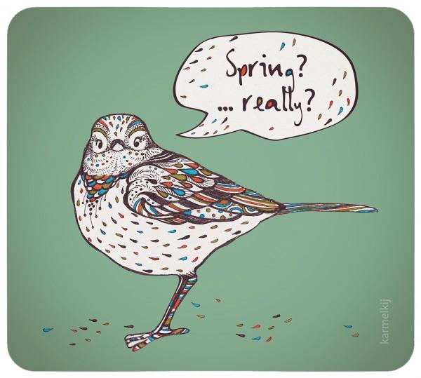 spring_bird
