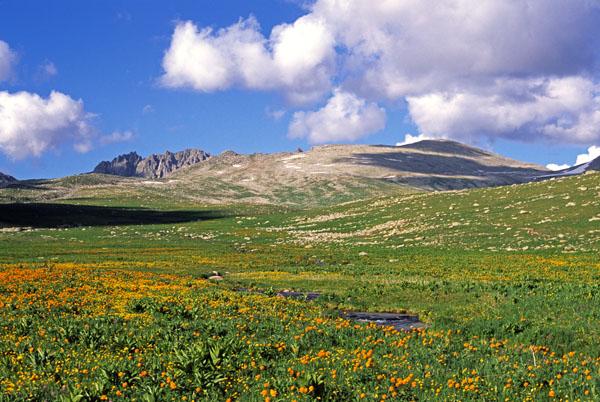 Западный Алтай
