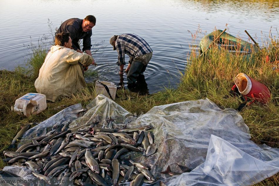 в якутию на рыбалку
