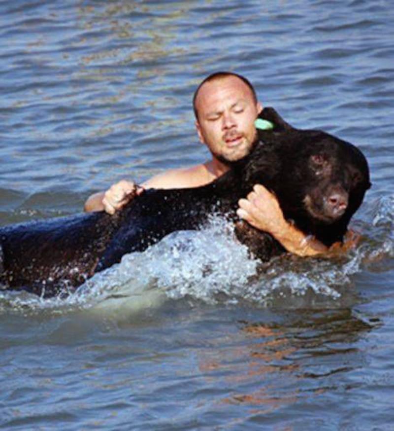 Adam-Warwick-saves-tranquilised-black-bear-from-drowing