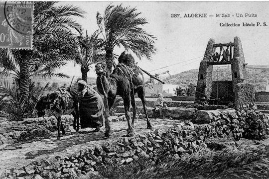 1155152-les-animaux-travaillent-au-puits