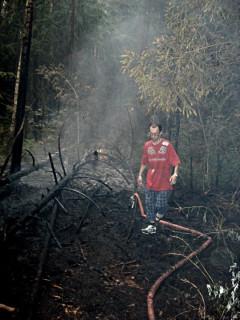 Лесной пожар в Ногинске