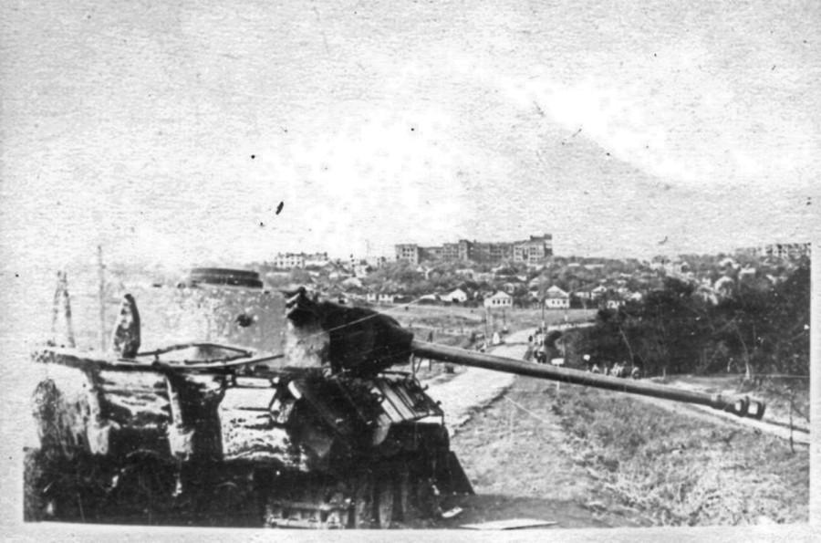 Драная кошка Вермахта – из истории одной фотографии