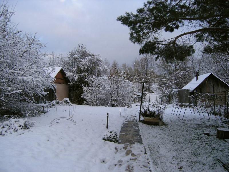 начало зимы 1