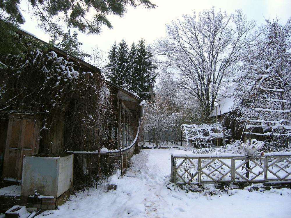 начало зимы 2