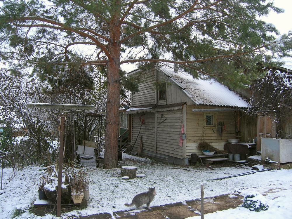 начало зимы 3