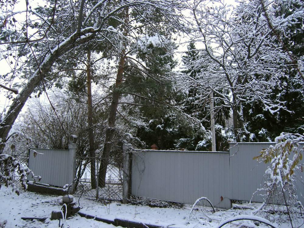 начало зимы 4