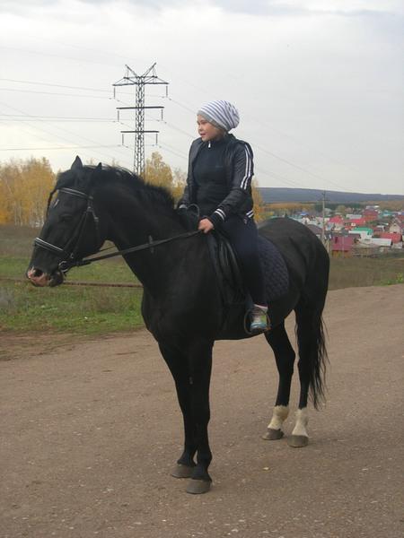 pronya_sm