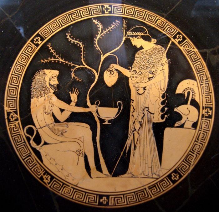 Геракл дарит яблоки Гесперид Афине - рисунок на античной вазе.jpg