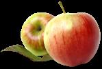 два яблока.png