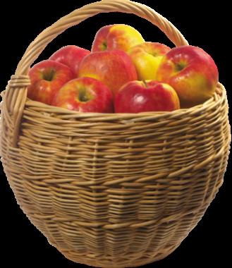 корзина яблок.png