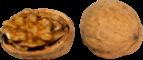 грецкий орех.png
