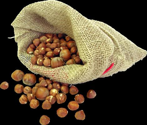 мешок лесных орехов.png