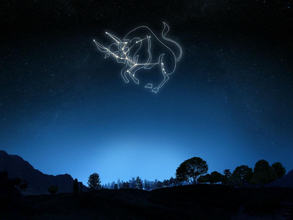 Созвездие Тельца.jpg