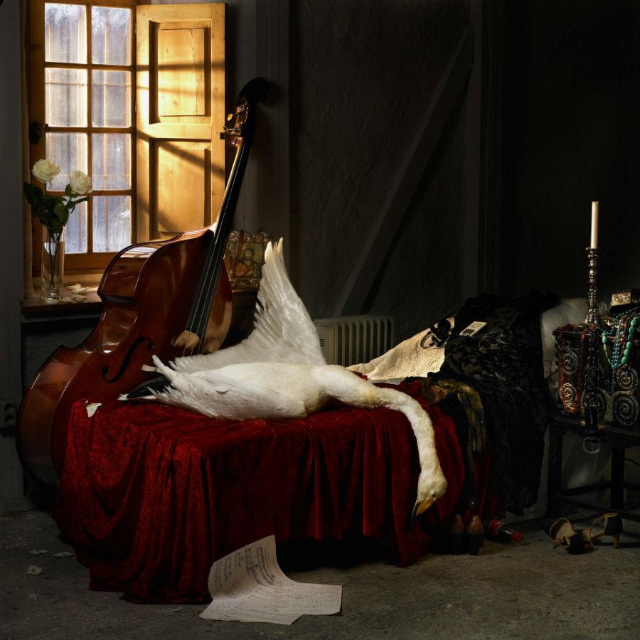 Стейнар Кристенсен - Леда и лебедь - 2011.jpg