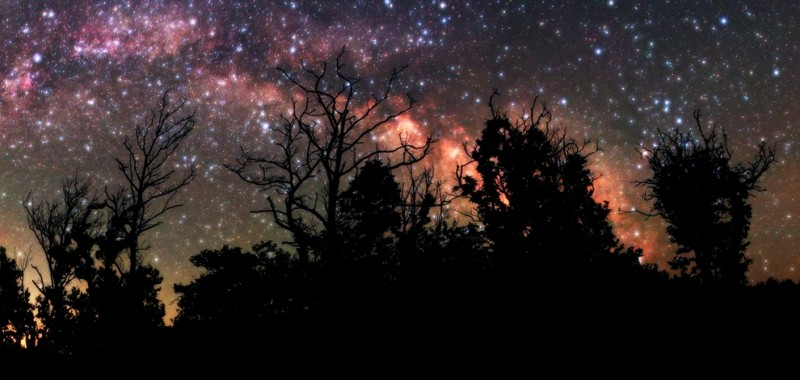 24.-A-few-trees-and-the-Milky-Way.-The-shot-was-taken-at-Pezi-Ikaria-800x380