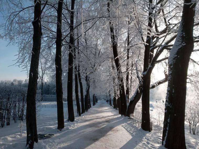 """"""" Есть городок в одном прекрасном парке...""""  ( Пушкин и Екатерининский парк ) - Страница 6 1043328_800"""