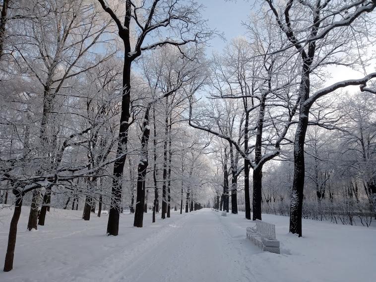 """"""" Есть городок в одном прекрасном парке...""""  ( Пушкин и Екатерининский парк ) - Страница 6 1043919_800"""