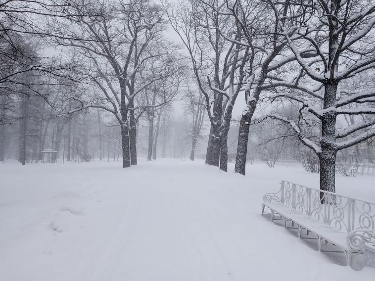 """"""" Есть городок в одном прекрасном парке...""""  ( Пушкин и Екатерининский парк ) - Страница 6 1050526_800"""