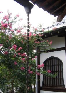 Eikando Zenrin-ji decorative rain channel
