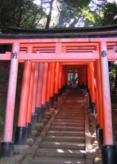 Torii at Fushimi Inari