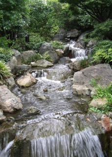 Sensô-ji garden